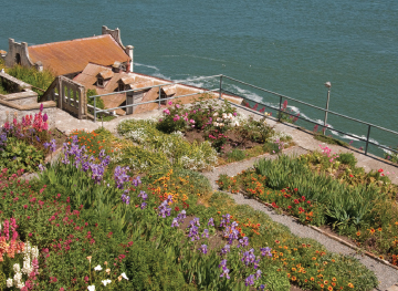 Marina Times - NEWS: The revitalized gardens of Alcatraz are worthy
