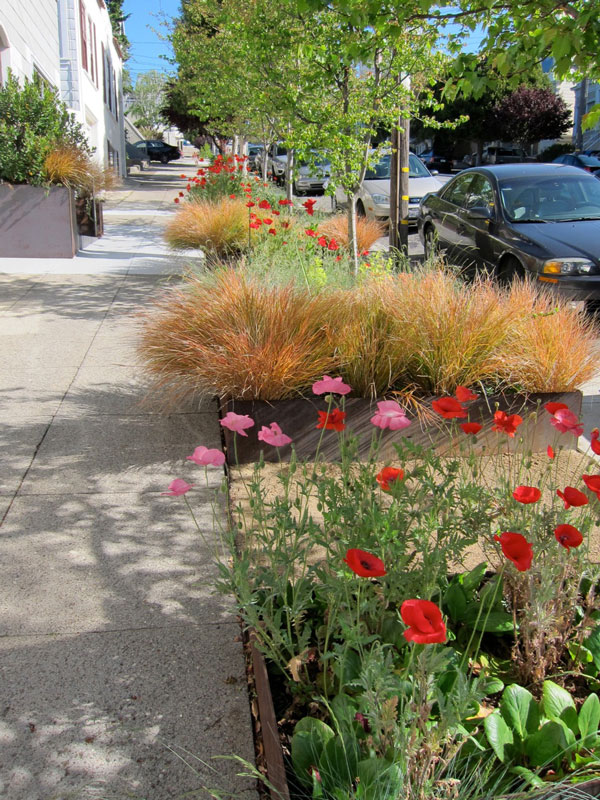 Transform Your Sidewalk Into An Urban Garden