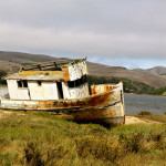 Overlooking Tomales Bay    photos: Garrick Ramirez