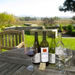 Kick back at VML Winery (Bo Links)