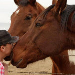 Monica Hardeman bonding with two of her rescue horses.
