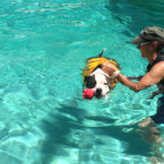 Skylar's hydrotherapy went swimmingly.