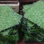 Fake grass has come a long way and can now replicate mixed colors and even dying blades of grass.     photo: projectmanhattan