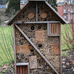 Building artificial bee habitats can be a fun project and a helpful act.     photo: Gilles San Martin from Namur, Belgium