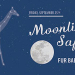 The Fur Ball: Moonlight Safari