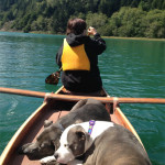 Skylar and Blue snooze in the sun on a Big River canoe trip.     photo: steve russell