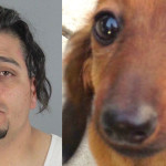 Juan Zarate, who was arrested May 15, 2016 for Felony Animal Cruelty at a PetSmart in San Mateo after the death of Henry, a 1-year-old Dachshund, during at a routine grooming session.