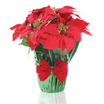 Poinsettias should avoid drafts and dry heat.