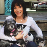 Muttville Senior Dog Rescue founder Sherri Franklin is a finalist for CNN Hero of the Year. photo: dogtime.com