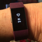 The author's Fitbit