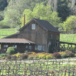 Visit Mill Creek Winery. (Photo: Bo Links)
