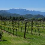 Southern Oregon's scenic Applegate Valley.  photo: Bo Links
