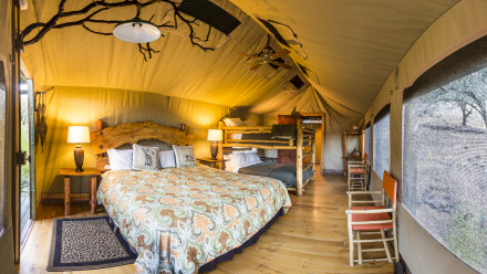 Stay in one of the plush African tents.  Image courtesy of Safari West