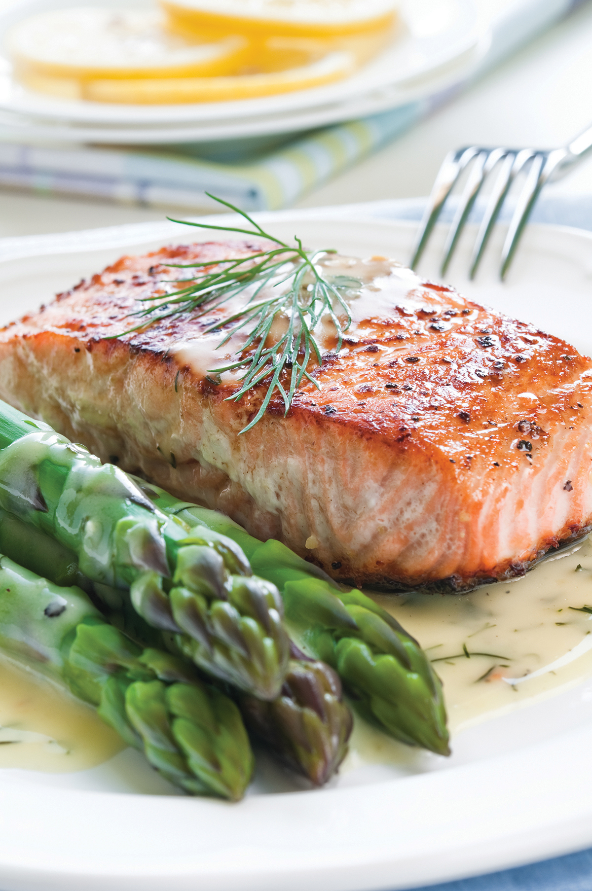 High protein low fat lose weight